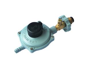 防暴安全液化调压器